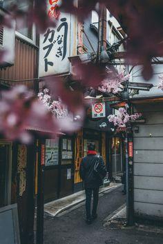 Shinjuku district of Tokyo in spring #Japan