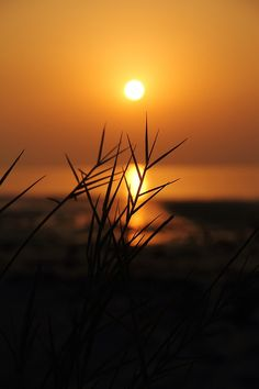 Photographs by Elriz Beautiful Nature Wallpaper, Beautiful Sunset, Beautiful Landscapes, Blur Photography, Summer Nature Photography, Black And Blue Wallpaper, Beach Sunset Wallpaper, Village Photos, Sunset Photos