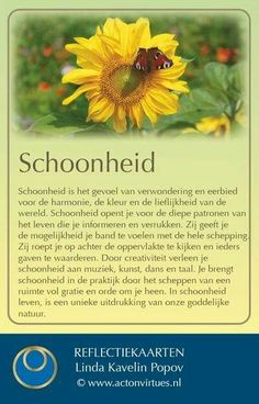 🌞 Learn Dutch, Personal Progress, Self Image, Social Work, Personal Branding, Reflection, Coaching, Life Quotes, Bible