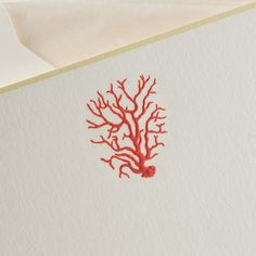 Boxed Note Cards | Poppy Red Coral on vertical Bone White Card with Lichen Borders and Tan Tissue