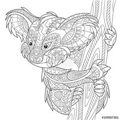 Vector: Zentangle stylized cartoon koala bear, isolated on white background. Hand drawn sketch for adult antistress coloring page, T-shirt emblem, logo or tattoo with doodle, zentangle, floral design elements