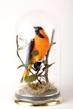 """Vegan Taxidermy"" crepe paper birds by artist Aimee Baldwin"