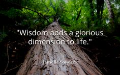 """Wisdom adds a glorious dimension to life."" . Jamelle Sanders"