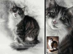 Cat Portraits - Katja's Custom Cat Paintings & Drawings