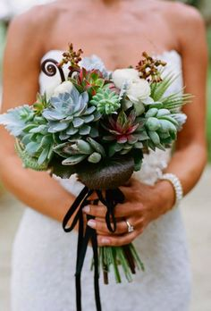 Succulents by Q Weddings