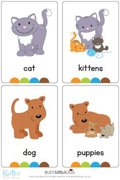 """Our """"On the Farm Flash Cards"""" are a great learning tool for your children to learn about everything on the farm. You will receive 32 printable flash cards, all with bright, colourful, high quality images ready to print and play! Teach English To Kids, Kids English, English Lessons, Farm Animals Preschool, Preschool Learning, Preschool Activities, English Classroom, Classroom Language, Teaching English Grammar"""