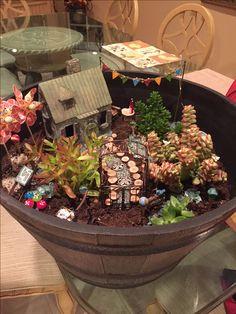 Kerry's garden -