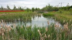 by-HYL-Bretigny-Bois-Badeau-16 « Landscape Architecture Works   Landezine