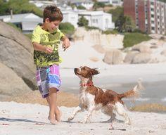 Wanda playing on Camps Bay beach. #campsbay #dogfriendly