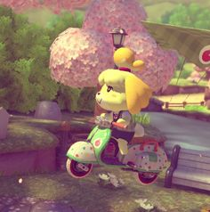 Isabelle riding her City Tripper