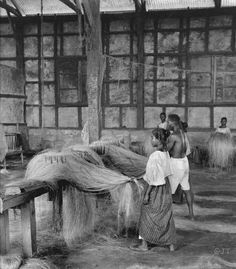 Filipino Rope Factory, combing the fibers of Manila Hemp, Philippines, early Century Philippines People, Philippines Culture, Manila Philippines, Philippines Travel, Filipino Art, Filipino Culture, Chinese Culture, Ancient Greek Architecture, Gothic Architecture