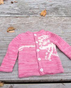 Pink Cardigan with Dino Knitting Pattern - 100 Baby Sweater Patterns Dinosaur Jumper, Dinosaur Pattern, Baby Sweater Patterns, Knitting Patterns, Pink Cardigan, Double Knitting, Baby Sweaters, Knit Crochet, Men Sweater