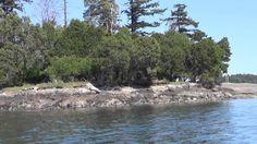 Matthew Heines on San Juan Island  Adventure May 1 4, 2015