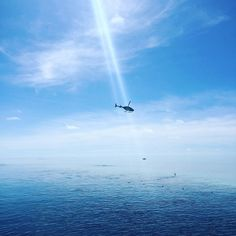 Heli rides over Great Barrier Reef. #cruisewhitsundays #greatbarrierreef #babymoon #sunshine #7wondersoftheworld by craigmatthew81 http://ift.tt/1UokkV2