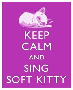 Soft kitty, Warm kitty Little ball of fur Happy kitty, Sleepy kitty Purr, purr, purr Cant Keep Calm, Stay Calm, Keep Calm And Love, Love You, Great Quotes, Funny Quotes, Life Quotes, Qoutes, Inspirational Quotes