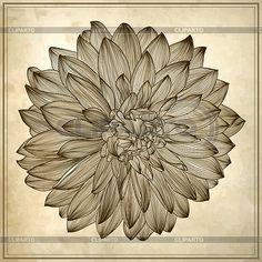 3545255-drawing-of-dahlia-flower-on-grunge-background.jpg (400×400)