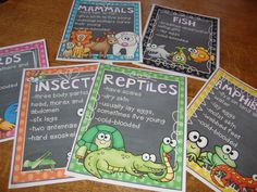 Studying animal groups or learning about animals? This unit has reader theatre scripts, posters, lessons, vocabulary and activities that go with learning about the different animal groups!