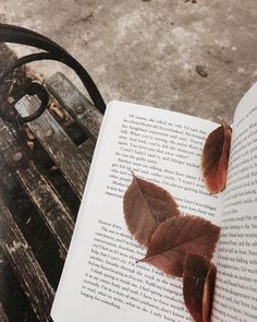 autumn, book, and fall image Autumn Photography, Book Photography, Photos Amoureux, Autumn Cozy, Autumn Fall, Winter, Autumn Feeling, Photo Portrait, Brown Aesthetic