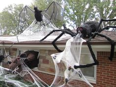 Oh my gosh, a giant insect infestation house on Halloween Forum. Check it out!
