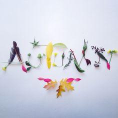 <{AUTUMN}> by Holland Seydel #botanicalfont #flowerfont #flowerpower #flowerletters