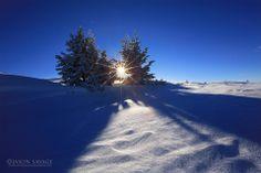 Montana Winter - Jason Savage Photography