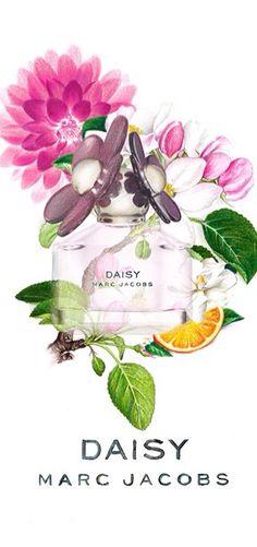 Daisy perfume