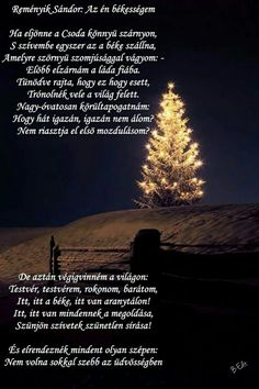Holidays And Events, Advent, Quotes, Books, Christmas, Quotations, Xmas, Libros, Book
