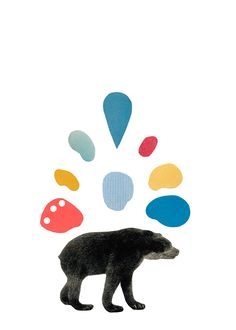 new collages and pattern - bear