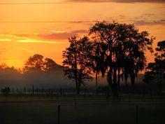 Florida sunrise By...Kari Butler