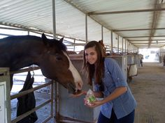 Love, joy, and bonding time with our rescued horses