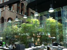 Conservatorium Brasserie and Lounge, Van Baerlestraat 27 1070 LP