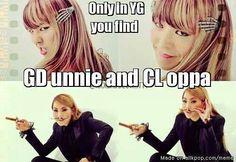 I ship them as GD unnie and CL oppa or GD and CL or anything else >^< 2ne1, G Dragon, Daesung, Bigbang, Btob, Vixx, One Yg, Big Bang Memes, Lee Hi