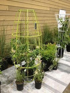 On a smaller scale than the Eco Walls, the Terra Trellis allows you to create a living sculpture garden in your backyard. Steel garden trellises and arbors in modern forms work along with your growing plants to create a really interesting opportunity for modern landscape designing.