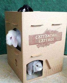 Cats & Rabbits & More - Adoptions ~ Education ~ Pet Products - Cottontail Cottages. maybe a guinea pig house