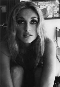 Sharon Tate By James Silke  (1968)