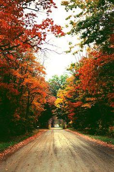 Color me Autumn.