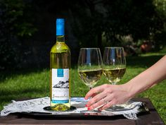 "New ""Bonazolae"" white wine! #CaduFerra #Bonassola #Liguria"