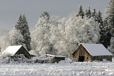 Love old barns and snow scenes Barn Pictures, Snow Pictures, Snow Scenes, Winter Scenes, Have A Beautiful Sunday, Winter Magic, Winter Photos, Winter Beauty, Old Barns