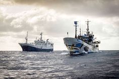 2016-02-10 - Sea Shepherd Is Hunting the Last of the World's Most Notorious Poaching Vessels. Illegal Chilean sea bass fishing could be coming to an end.