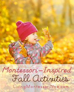 Montessori-Inspired Fall Activities - links to themed units with LOTS of fall activities for each theme (apples, pumpkins, autumn leaves, squirrel and nut activities, corn, Halloween, and Thanksgiving) as well as Pinterest boards for each theme.