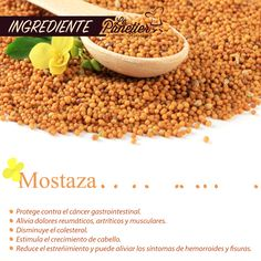 Además de ser deliciosa, la mostaza es un ingrediente con múltiples beneficios para nuestro cuerpo.