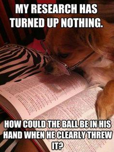 indeed how?  #dog #humor