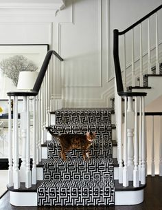 source: Virginia Macdonald Photography Chic foyer staircase with glossy black staircase handrail, glossy black stair treads, glossy white wood balusters, white 7 black Greek key fretwork stair runner and decorative wall moldings. - Futura Home Decorating Black Staircase, Foyer Staircase, Staircase Handrail, Staircases, Staircase Runner, Stair Treads, Black Railing, Wood Stairs, Carpet Runner On Stairs