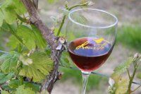 Wineries in New Jersey - New Jersey Wines
