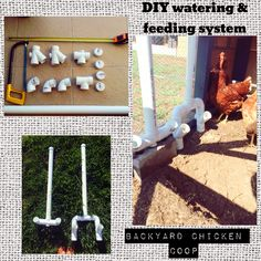 Chicken feeding and watering system. Made with PVC pipes. We made it so that the entry parts of food sticks out of the coop like a chimney. No need to disturb the happy hens