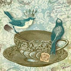 Birds on a teacup- click on the image save as!