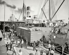 """Circa 1903. """"Unloading bananas at New Orleans, Louisiana."""" An alternate view of this scene. 8x10 inch glass negative, Detroit Publishing Co."""