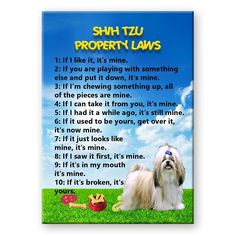 Shih Tzu Property Laws Fridge Magnet