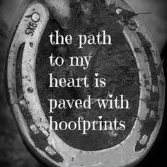 27 Horse Quotes – Quotes Words Sayings Rodeo Quotes, Equine Quotes, Equestrian Quotes, Racing Quotes, Equestrian Problems, Quotes Quotes, Hunting Quotes, Baby Quotes, Family Quotes