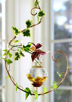 Handcrafted in Vermont by Vermont Nature Creations, these Hanging Water Gardens are an elegant, stylish and care-free way to grow a wide variety of plants in water.No green thumb? No problem.Using hydroponics–water, air and light and no soil–grow plants likeivy, philodendron, spider plants, impatiens, begonias, basil, mint, rosemary and more indoors.From $29.95 atVermont Nature Collections.